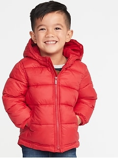 Hooded Frost-Free Puffer Jacket for Toddler Boys