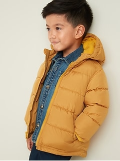 Frost-Free Hooded Puffer Jacket for Toddler Boys